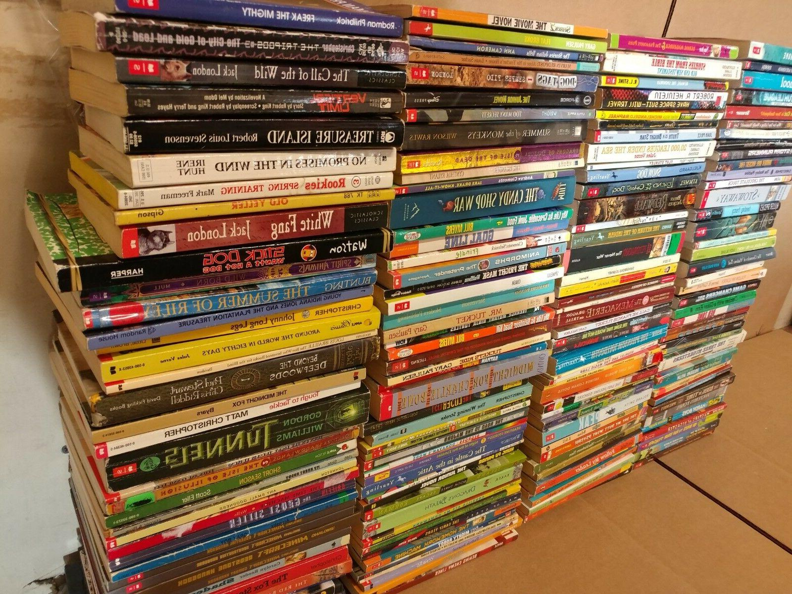lot of 20 chapter books for boys